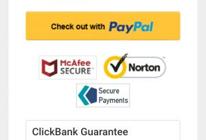 Softwares which guard the payment process