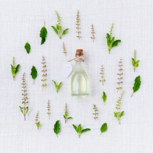 herbs benefits and side effects